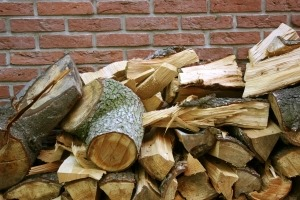 fire wood and preparing for winter